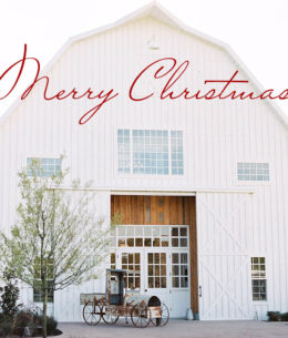 Merry Christmas from White Sparrow